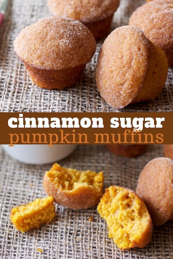 These cinnamon sugar pumpkin muffins are dipped in melted butter then rolled cinnamon sugar when they're warm from the oven. Served with some hot coffee, they are basically the best October breakfast ever. #pumpkinmuffins #cinnamonsugar #fallmuffins #fallbaking #pumpkindonuts