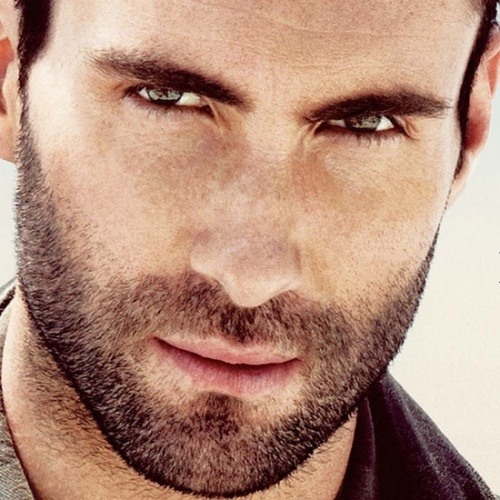 Adam Levine hotness