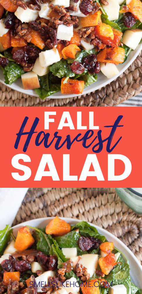 Pinnable image of Fall Harvest Salad.