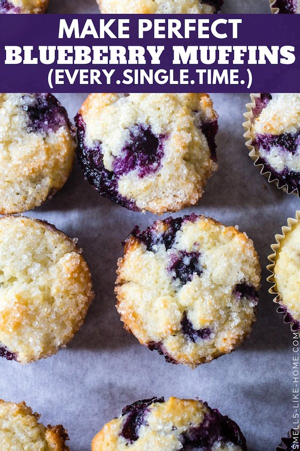 The Perfect Blueberry Muffins